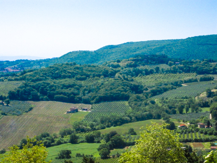 The rolling hills of Tuscany are home to vineyards and wineries ideal for wine tasting.
