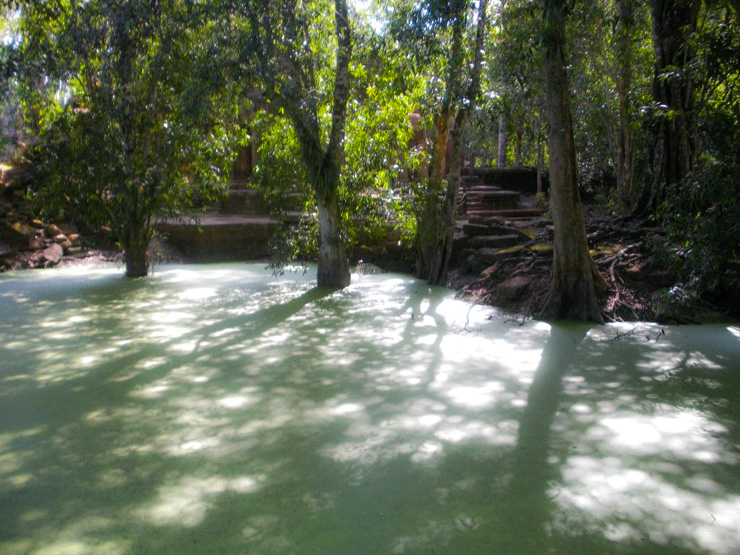 Hazy green water under the bridge leading to the Tomb Raider Temple.