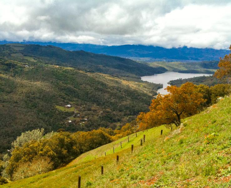 View from Kuleto Estates.