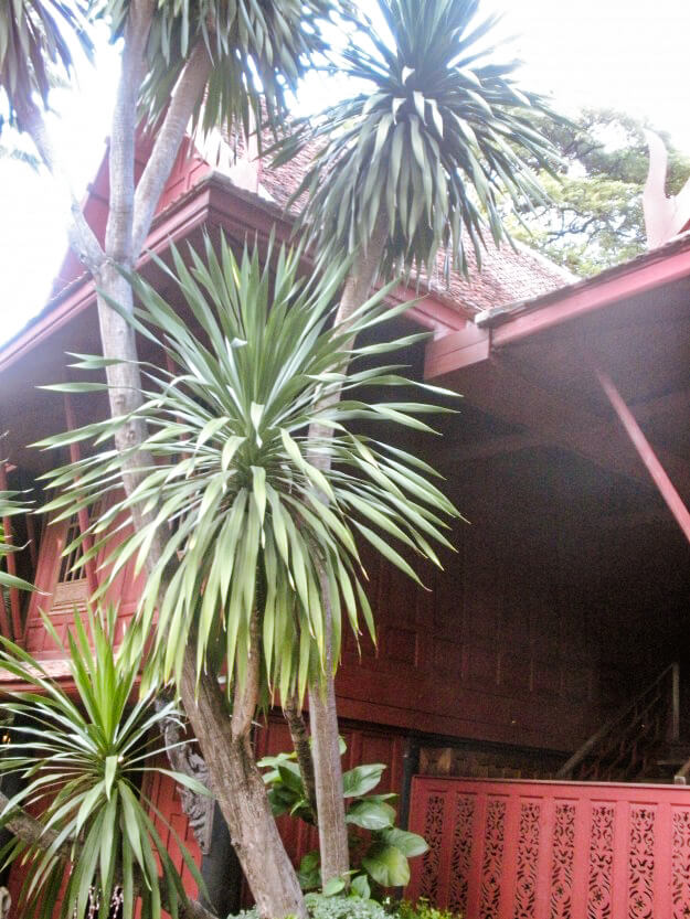 The jungle ambiance of the Jim Thompson House in Bangkok.