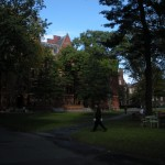 Harvard Campus: Serene walking trails through campus.