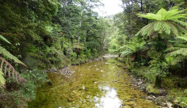 The narrow inlet of Torrent Bay to get to Cleopatra's Pool via Kayak in Abel Tasman, New Zealand.