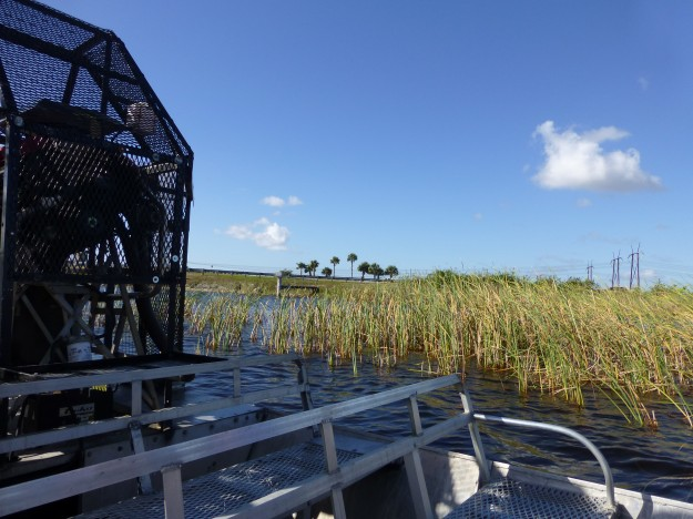 Riding in Style on the Airboat in the Everglades.