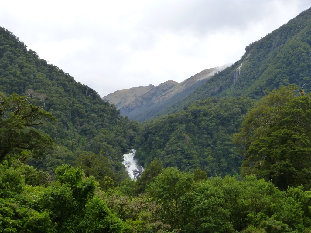 Roaring Billy Falls Walk: A view of the waterfall entices you from the road.