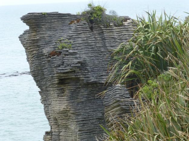 Pancake Rocks Punakaiki New Zealand