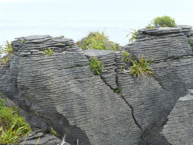 Pancake Rocks: These stacked rocks used to be marine organisms underneath the sea.