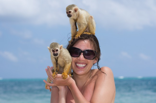 Monkeys on the beach in Mexico.