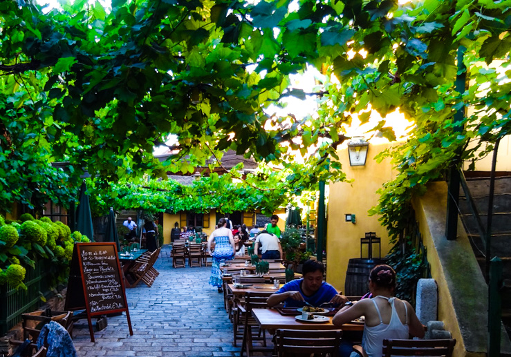 Romantic wine garden restaurant in Vienna.
