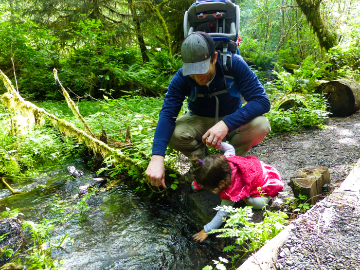 Fun playing in the little stream along the Spruce Nature Trail in Hoh Rain Forest.