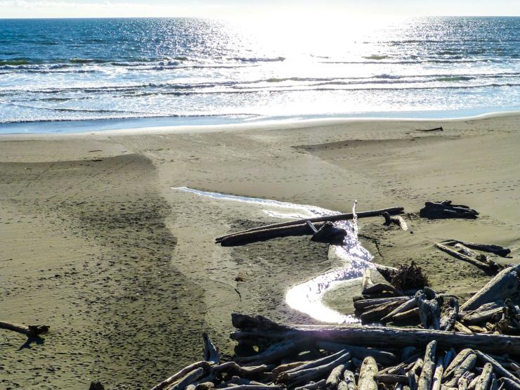 Gleaming water on the Washington coast.