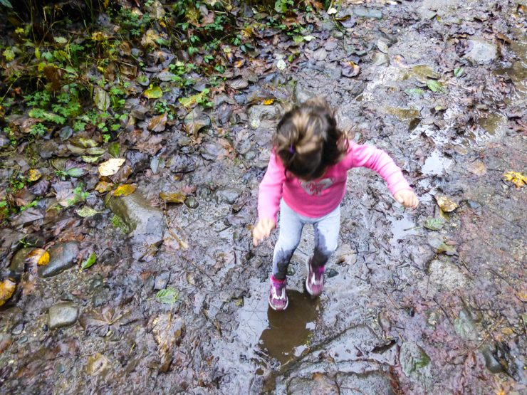 Jumping in puddles on a toddler hike in the Cascade Mountain Range in Washington.