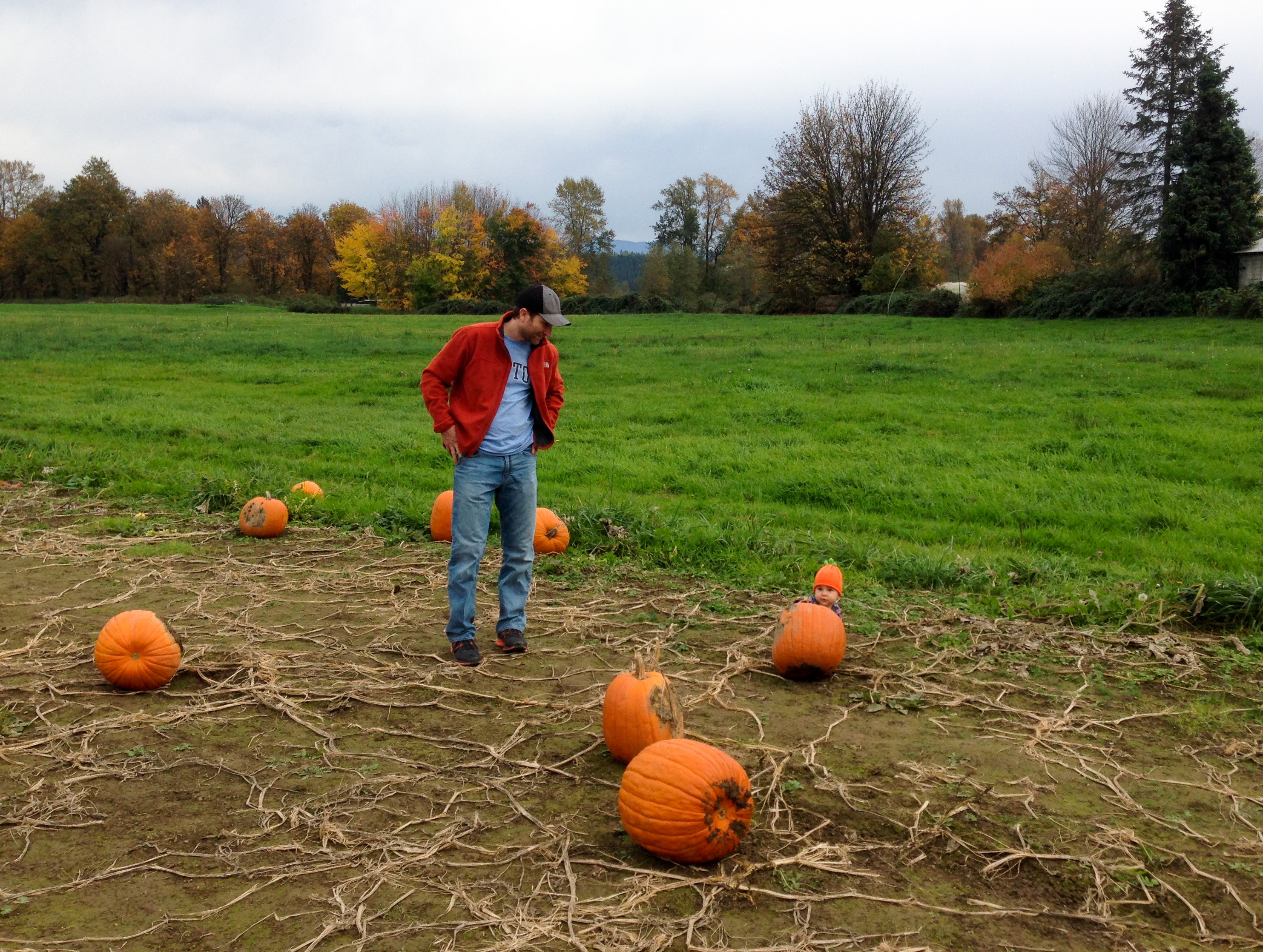 One of my faves from last year's pumpkin patch excursion. Where's Lulu?
