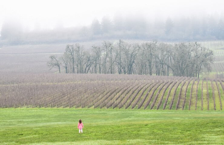 Tips for Wine Tasting with a Toddler in Tow