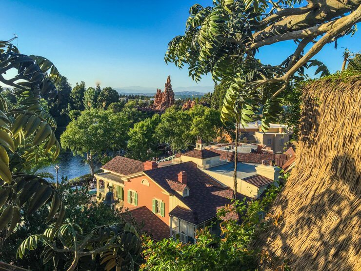 A view of Disneyland and Anaheim seen from Tarzan's Treehouse, a great attraction for a toddler.