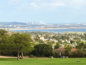 Ultimate Guide to San Diego