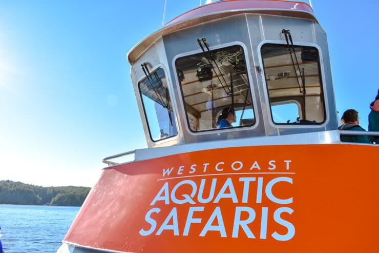West Coast Aquatic Safaris whale watching boat