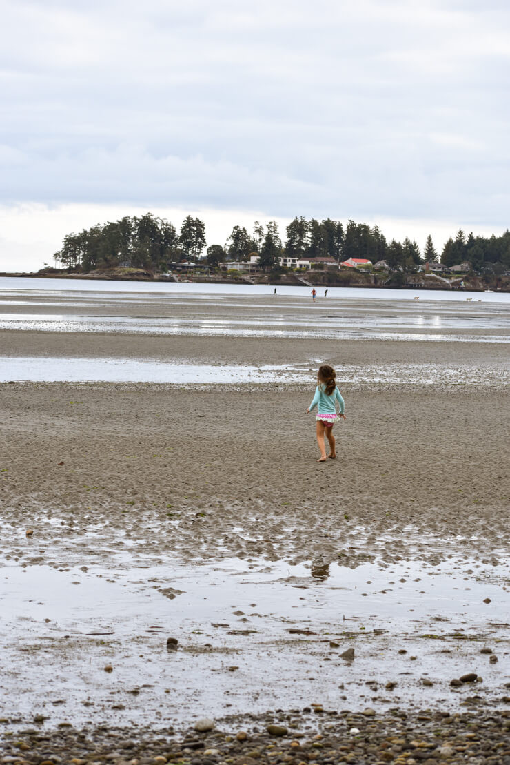 Parksville Beach during Low Tide.