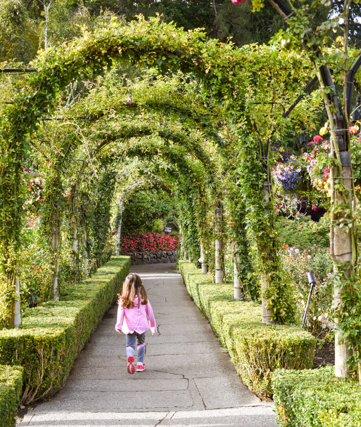 The tunnel that leads to the Rose Garden in Butchart Gardens