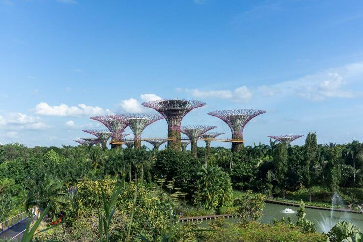 Gardens by the Bay in Singapore under a beautiful blue sky