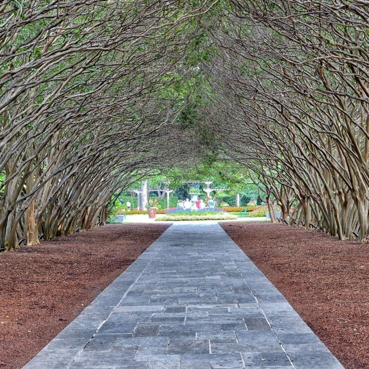 Archway at the Dallas Arboretum