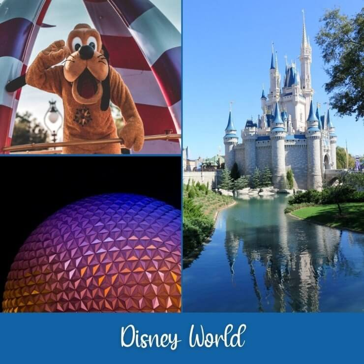 Experience the magic of Disney World on a day trip to the most magical place on earth while in Florida.