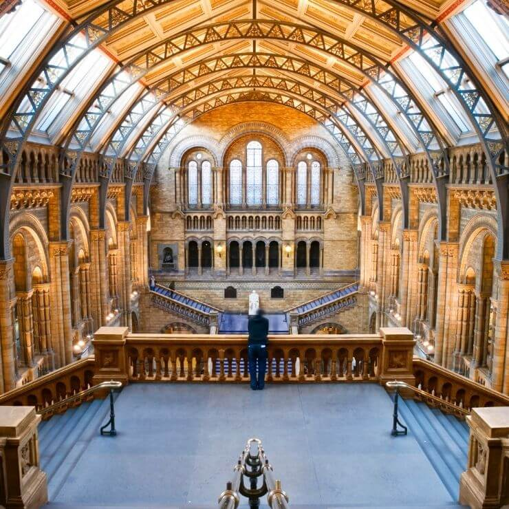 Natural History Museum in London is a top museum to see during a sightseeing day in London.
