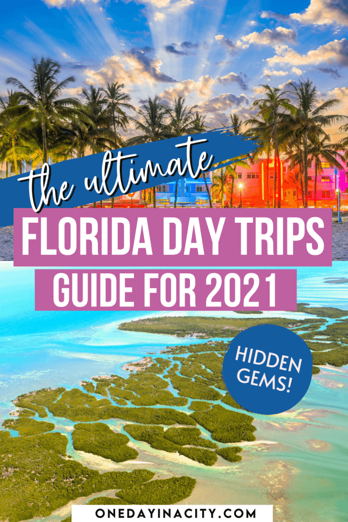 A local shares her top ten picks for the best day trips in Florida. Read on for the ultimate guide on where to go and what to see on these Florida day trips located around the state.