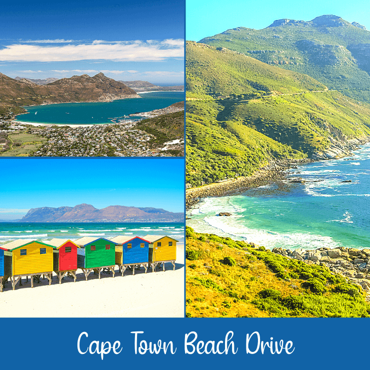 A beach drive from Cape Town takes you to incredible vistas, like Hout Bay, Chapman's Peak, and Muizenberg. It's worth it to rent a car during a day in Cape Town in order to see the coast.