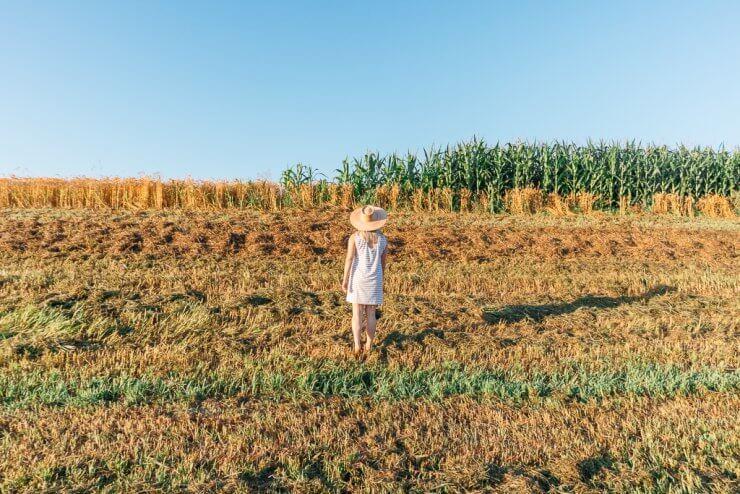 Fields near Omaha, Nebraska