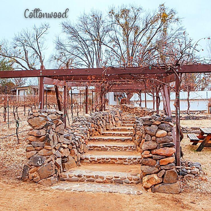 Vineyard in Cottonwood, AZ, a great wine weekend in Arizona
